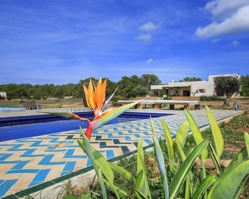 zellige cote piscine